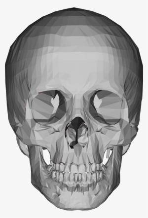 3d Skull PNG & Download Transparent 3d Skull PNG Images for Free