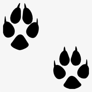 Animal Footprint Png Download Transparent Animal Footprint Png Images For Free Nicepng Polish your personal project or design with these elephants transparent png images, make it even more personalized and more attractive. nicepng