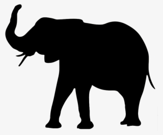 Elephant Png Download Transparent Elephant Png Images For Free Nicepng You can download free elephant png images with transparent backgrounds from the largest collection on pngtree. elephant png download transparent