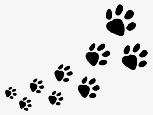 Rabbit Vector Foot Print Dog Footprints Png Transparent Png 600x454 Free Download On Nicepng Including transparent png clip art, cartoon, icon, logo, silhouette, watercolors, outlines, etc. rabbit vector foot print dog