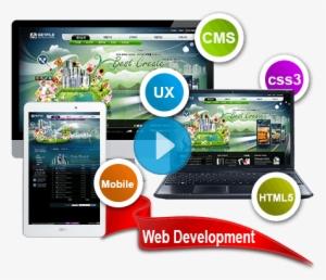 Responsive Website Design Development New York City Transparent Png 450x401 Free Download On Nicepng