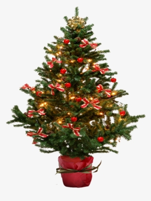 Christmas Png Download Transparent Christmas Png Images For Free