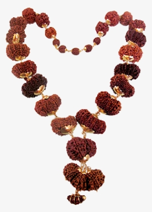 Rudraksha Mala Png Download Transparent Rudraksha Mala Png Images For Free Nicepng Rudraksha mala png is about is about necklace, buddhist prayer beads, rudraksha, clothing accessories, jewellery. transparent rudraksha mala png images