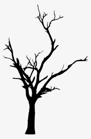 Free Png Dead Tree Silhouette Png Images Transparent Dead Tree Transparent Transparent Png 480x732 Free Download On Nicepng Silhouette cartoon black and white, black silhouette house png. free png dead tree silhouette png
