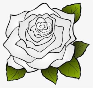 Gardenia Drawing White Rose Bunga Mawar Icon Png