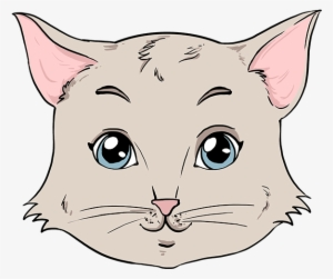 How To Draw Cat Face Cat Face Step By Step Transparent Png