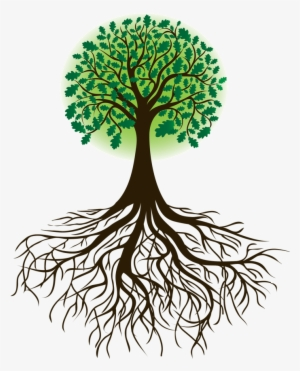 tree roots png download transparent tree roots png images for free nicepng transparent tree roots png