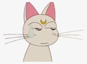 Report Abuse Artemis Sailor Moon Aesthetic Transparent Png 602x444 Free Download On Nicepng sailor moon crystal rus cover kichi utsune & len. report abuse artemis sailor moon