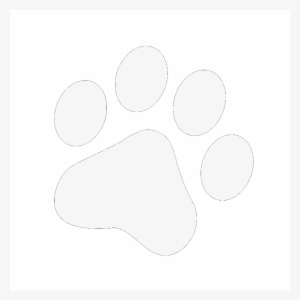 Perro Png Transparent Png 2400x2286 Free Download On Nicepng