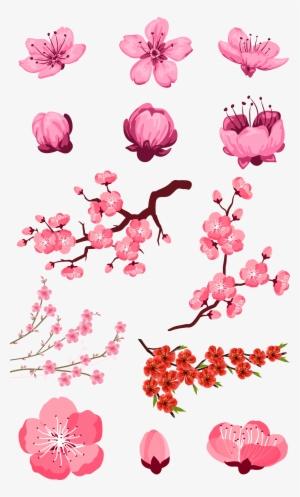 Adobe Download Pink Peach Transprent Png Free - Flores De Árbol De ...