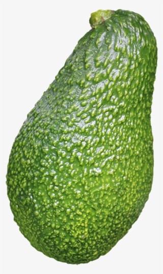 Avocado Png Download Transparent Avocado Png Images For Free