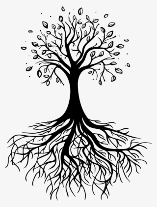 Tree Roots Download Transparent Tree Roots Images For Free