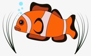 Fish Vector Png Download Transparent Fish Vector Png Images For