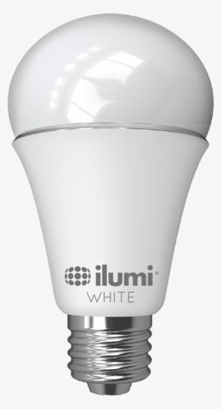 H1 Headlight Bulb