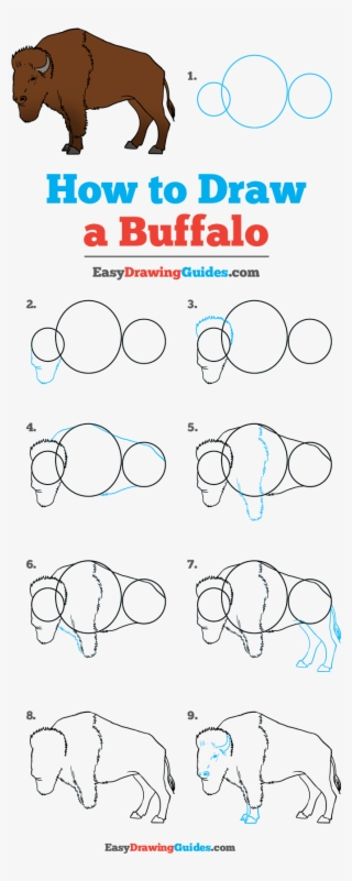 How To Draw Buffalo Draw A Football Step By Step Transparent Png