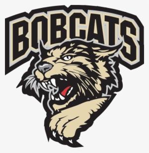 Bobcat Png Download Transparent Bobcat Png Images For Free Nicepng